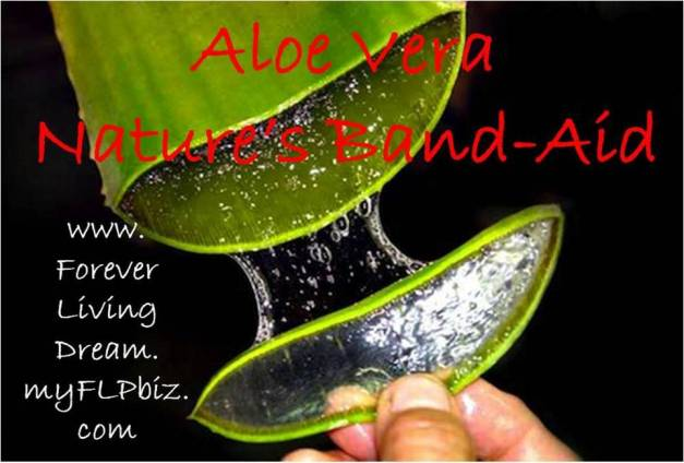 aloe vera natural band aid