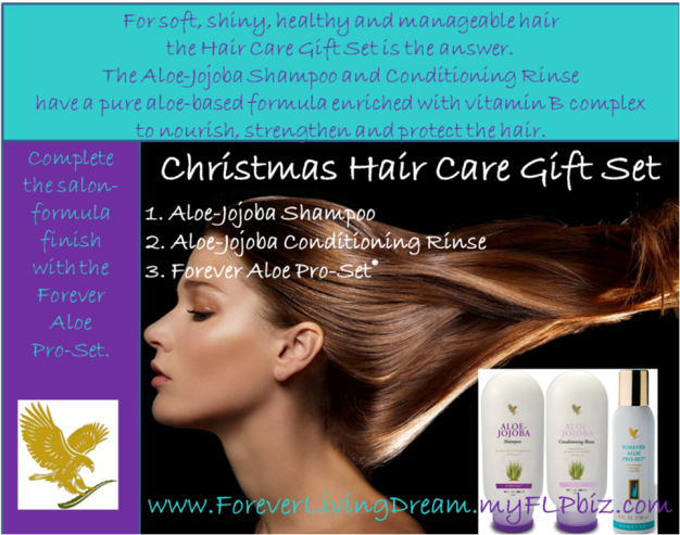 Christmas Hair Care Gift Set